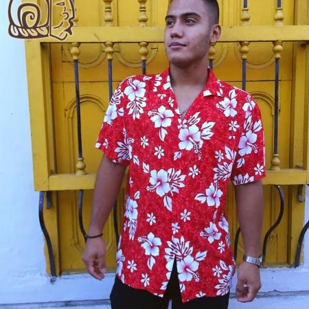 Camisa Hawaina